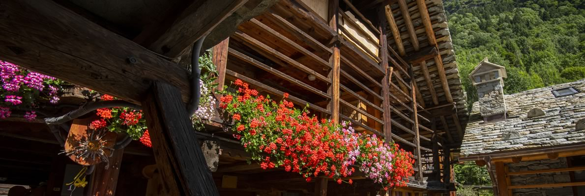 Visita il Piemonte in estate con Albastar